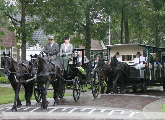 paardentram-voor-trouwerijen